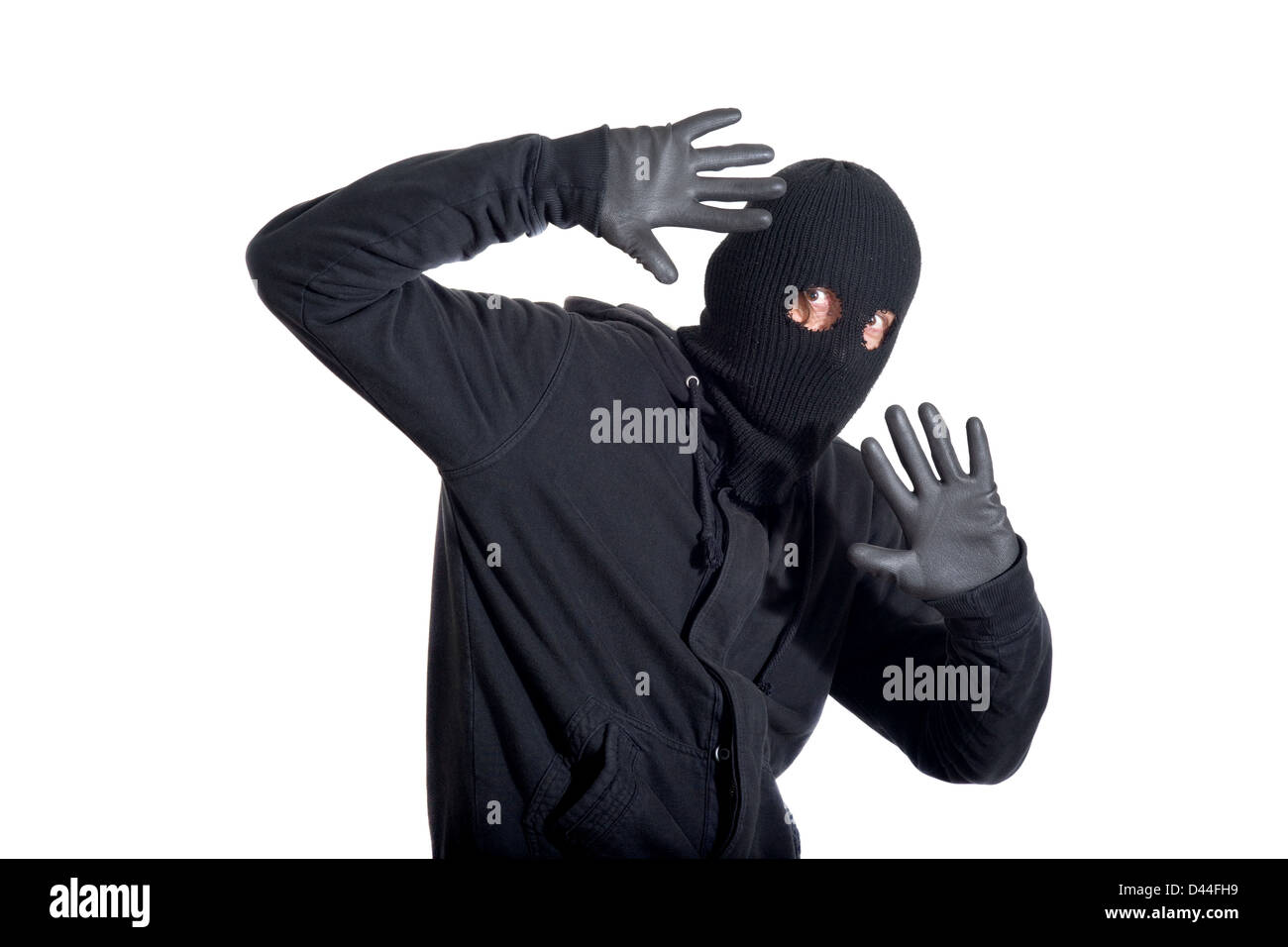 Catch the burglar concept, thief with balaclava caught, isolated on white background - Stock Image