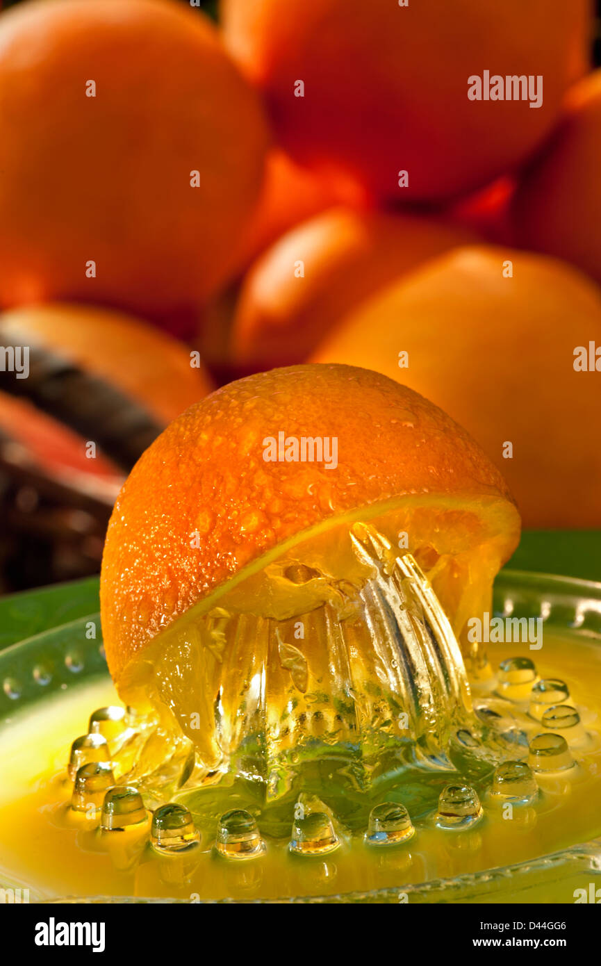 Orange juicer with freshly squeezed juice and basket of oranges in sunny alfresco garden terrace situation Stock Photo