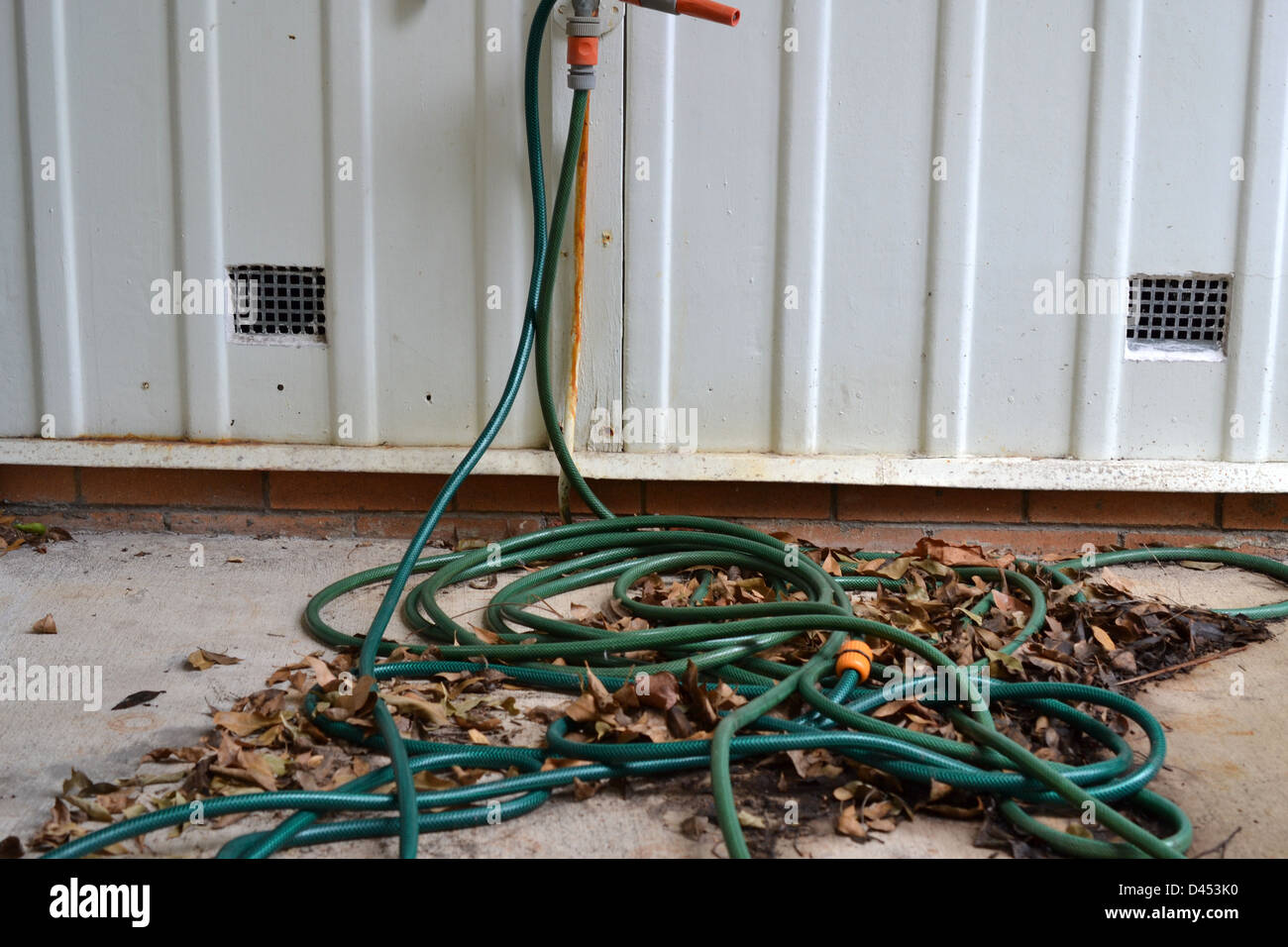 Untidy Garden Hose Tangled In Leaves At Side Of House