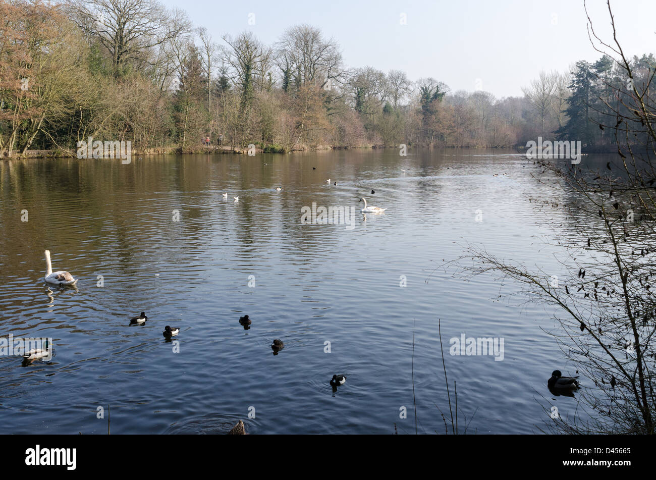Sandwell Valley Park Stock Photos & Sandwell Valley Park ...