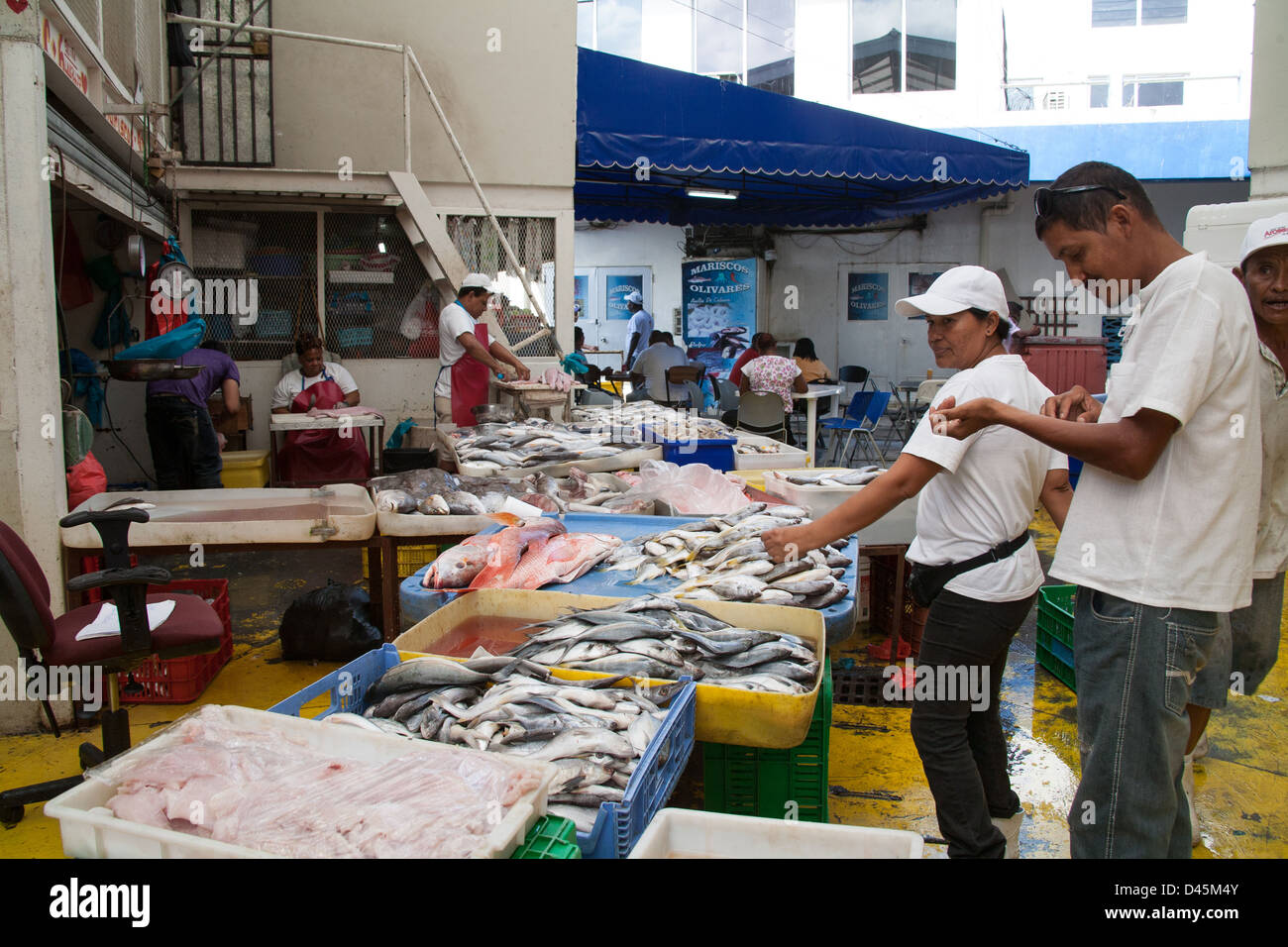 Buyers at the fish market in Panama City. - Stock Image