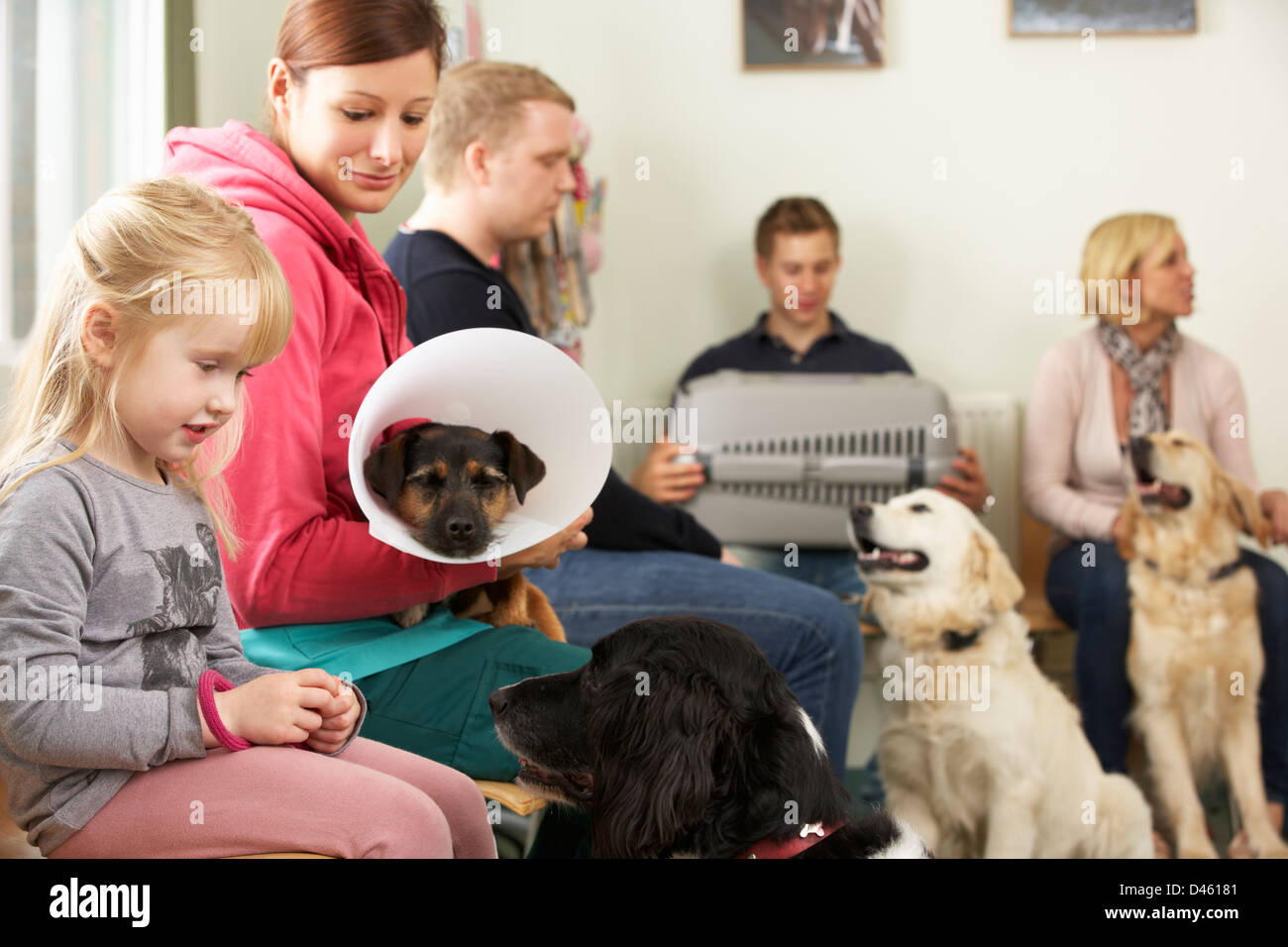 Busy Waiting Room In Veterinary Surgery - Stock Image