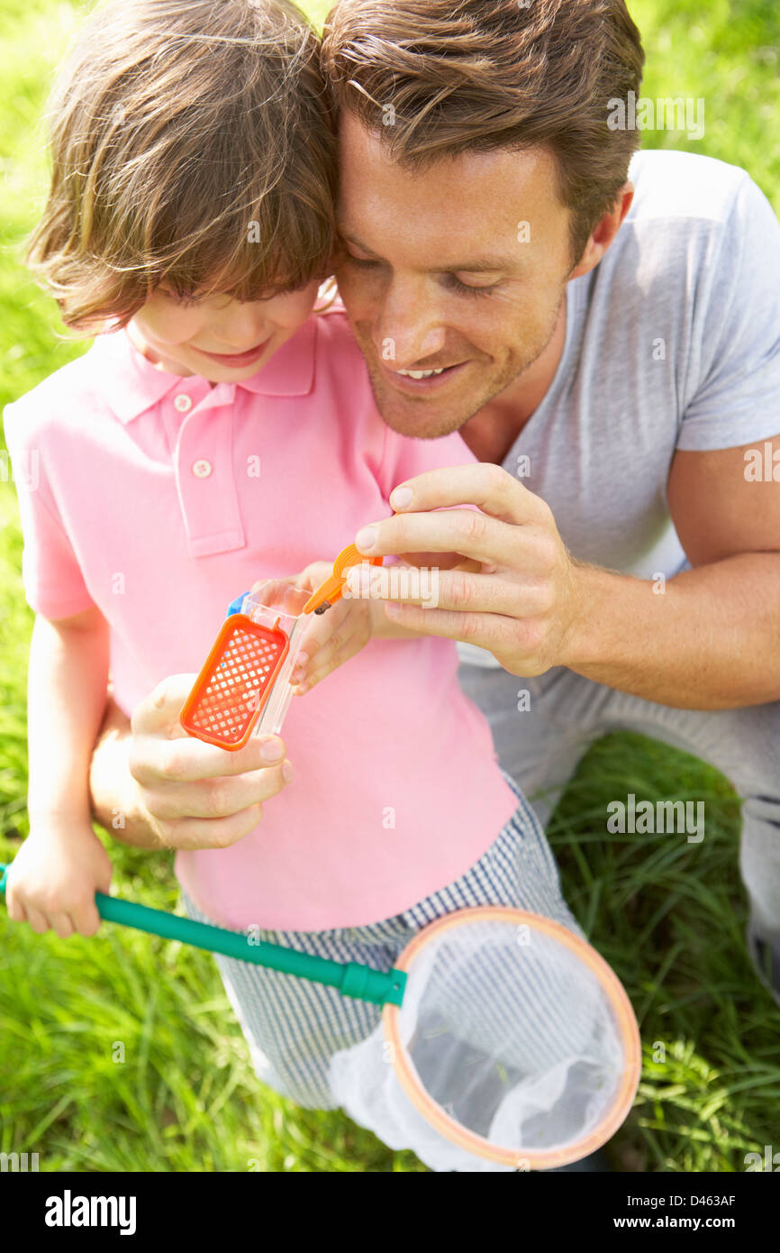 Father And Son In Field With Net And Bug Catcher - Stock Image