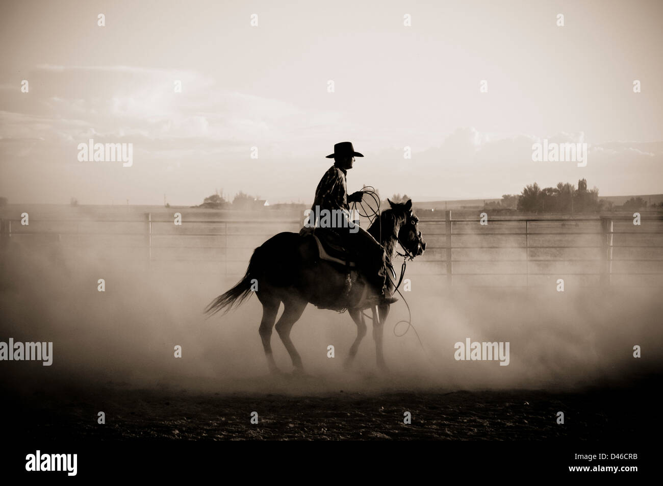 Cowboy riding horse in dusty arena. Black and White. Twin Falls, Idaho. - Stock Image