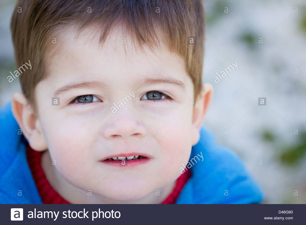 portrait of a cute little boy with brown hair and blue