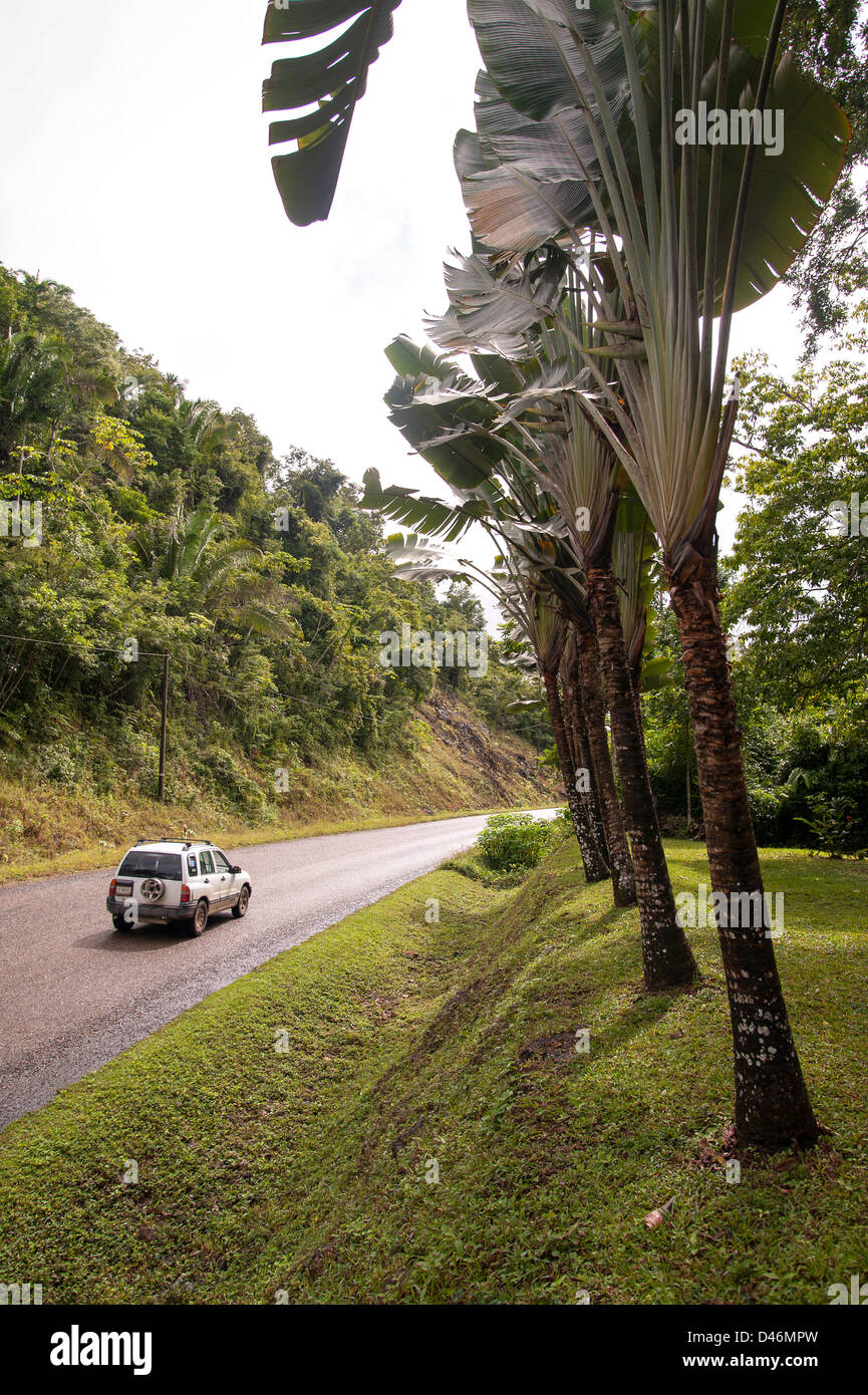 Along the Hummingbird Highway in Belize - Stock Image
