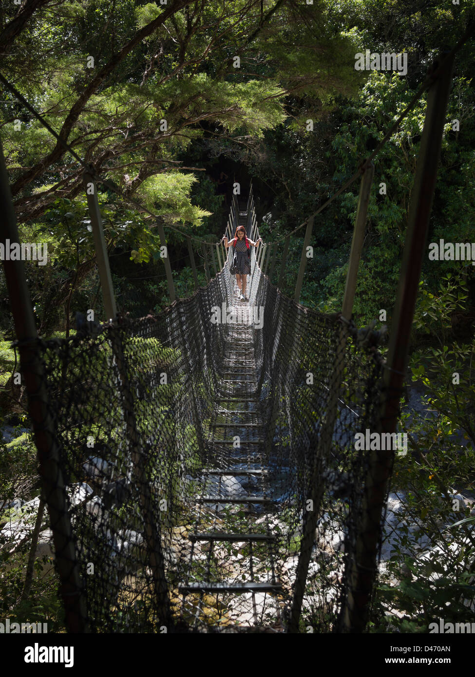 Suspension bridge over Wainui river, Abel Tasman National Park, South Island, New Zealand. - Stock Image