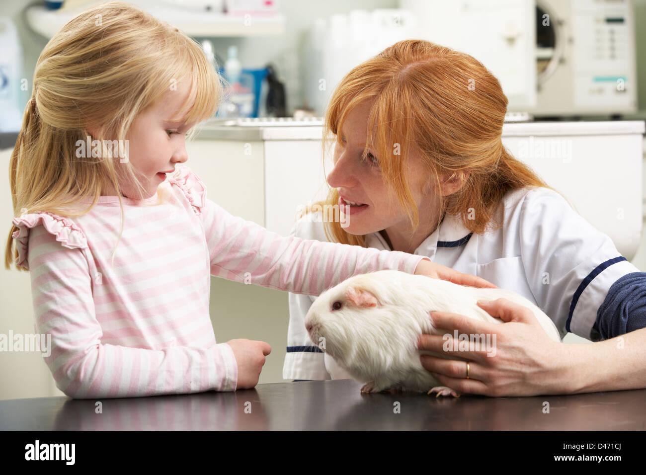 Female Veterinary Surgeon Examining Child's Guinea Pig In Surgery - Stock Image