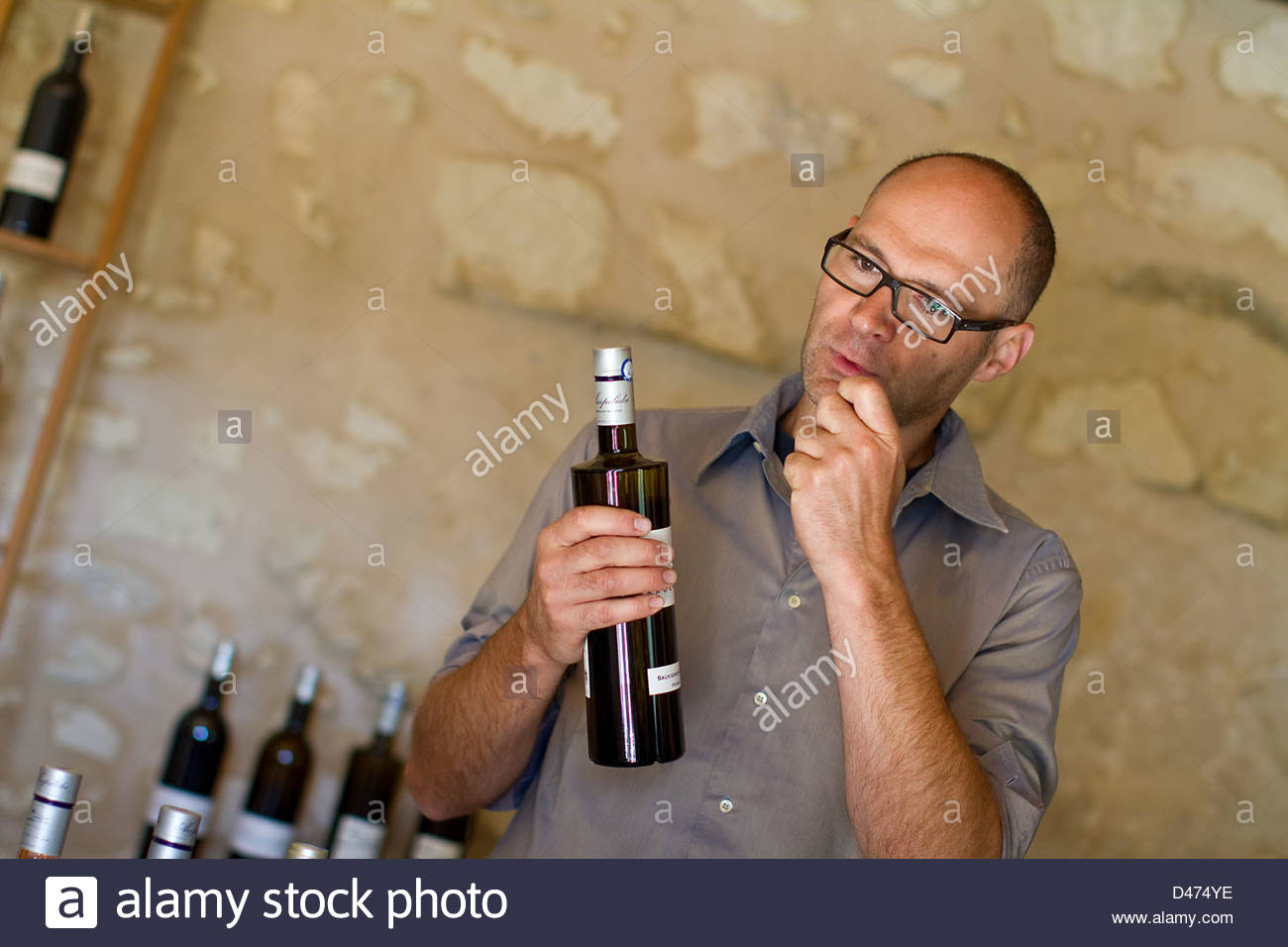 Tasting of Ampelidae with Frederick Pike, winemaker at Marigny-Brizay, Vienne, 86, Poitou-Charentes, France - Stock Image