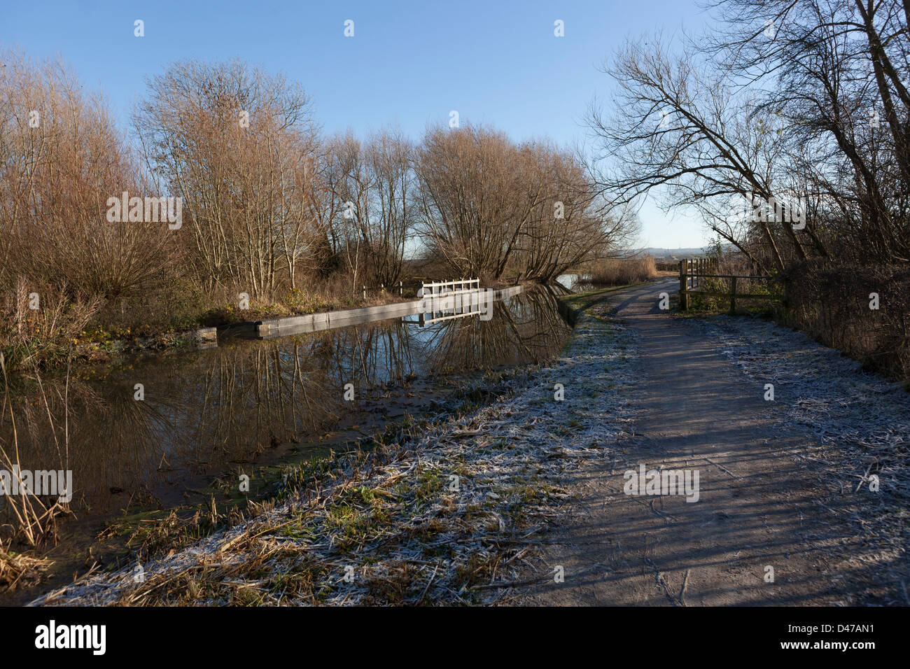 Grantham Canal towpath at Gamston - Stock Image