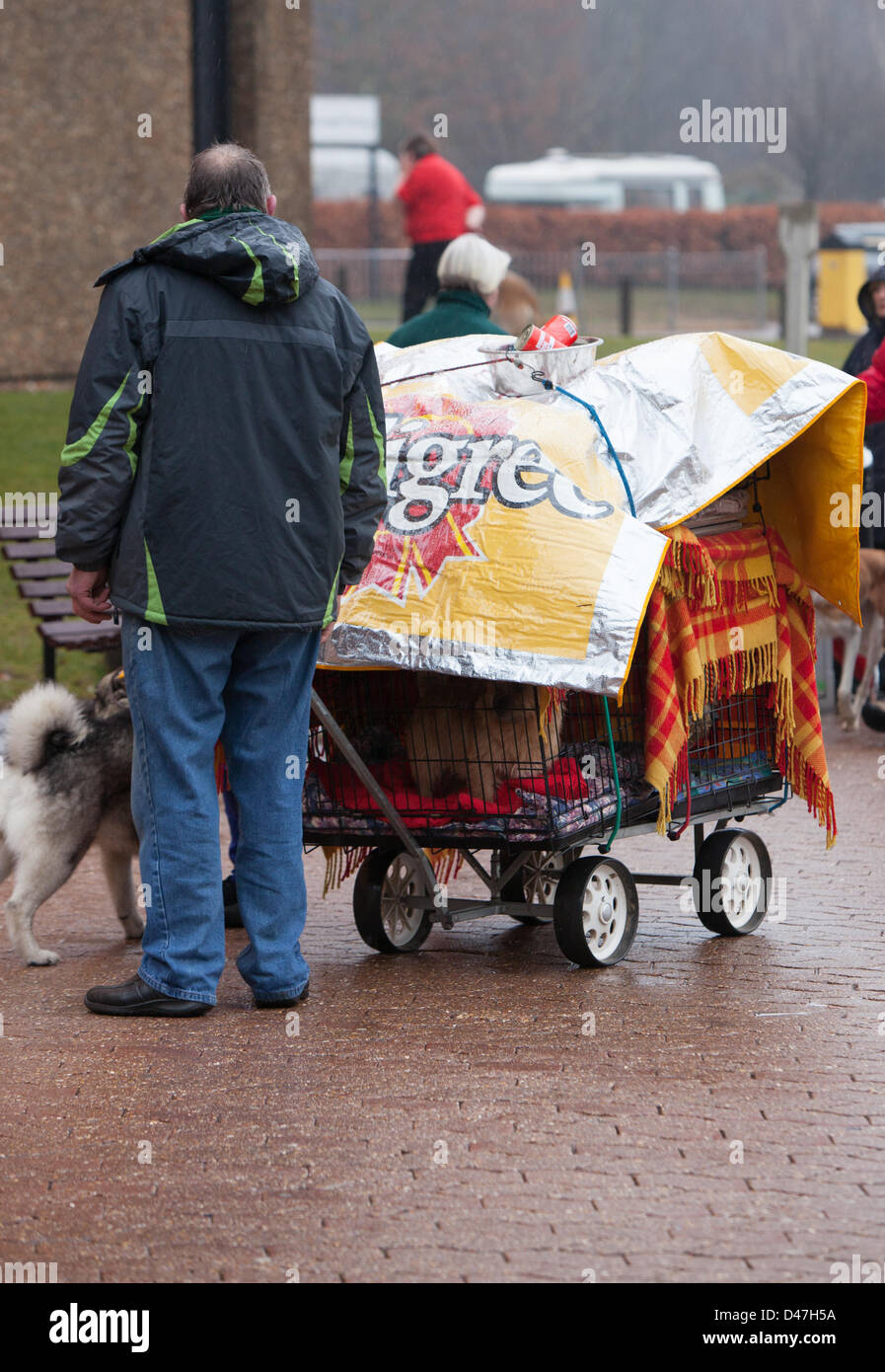 NEC, Birmingham, UK. 7th March 2103. Keeping the dogs under wraps asd they arrive for Crufts 2013 Credit:  Chris - Stock Image