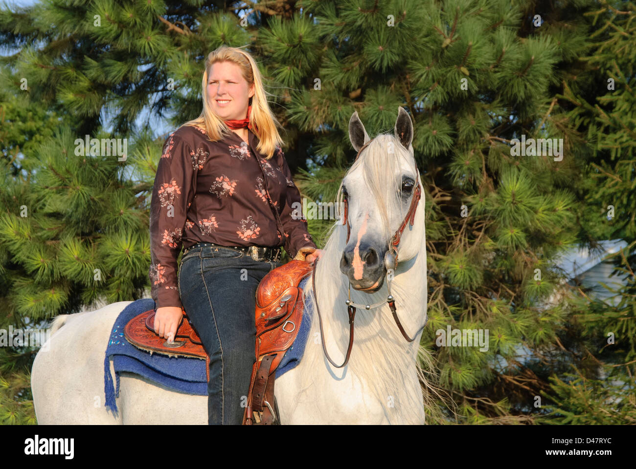 Woman Horseback Riding In Evening Summer Light Side View Still Pose Stock Photo Alamy