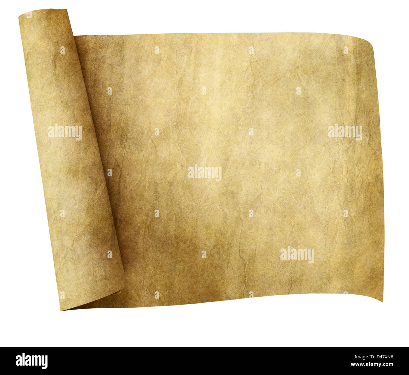 old parchment paper scroll isolated on white background - Stock Image