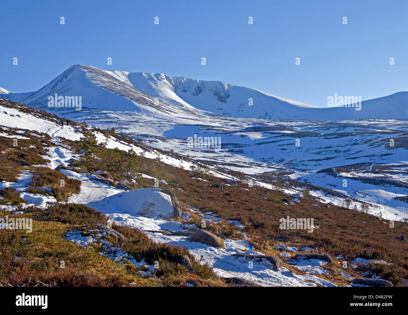 Cairn Lochan and Coire an Lochain seen from the lower slopes of the Fiacaill ridge, Cairngorms, Scottish Hghlands, - Stock Image