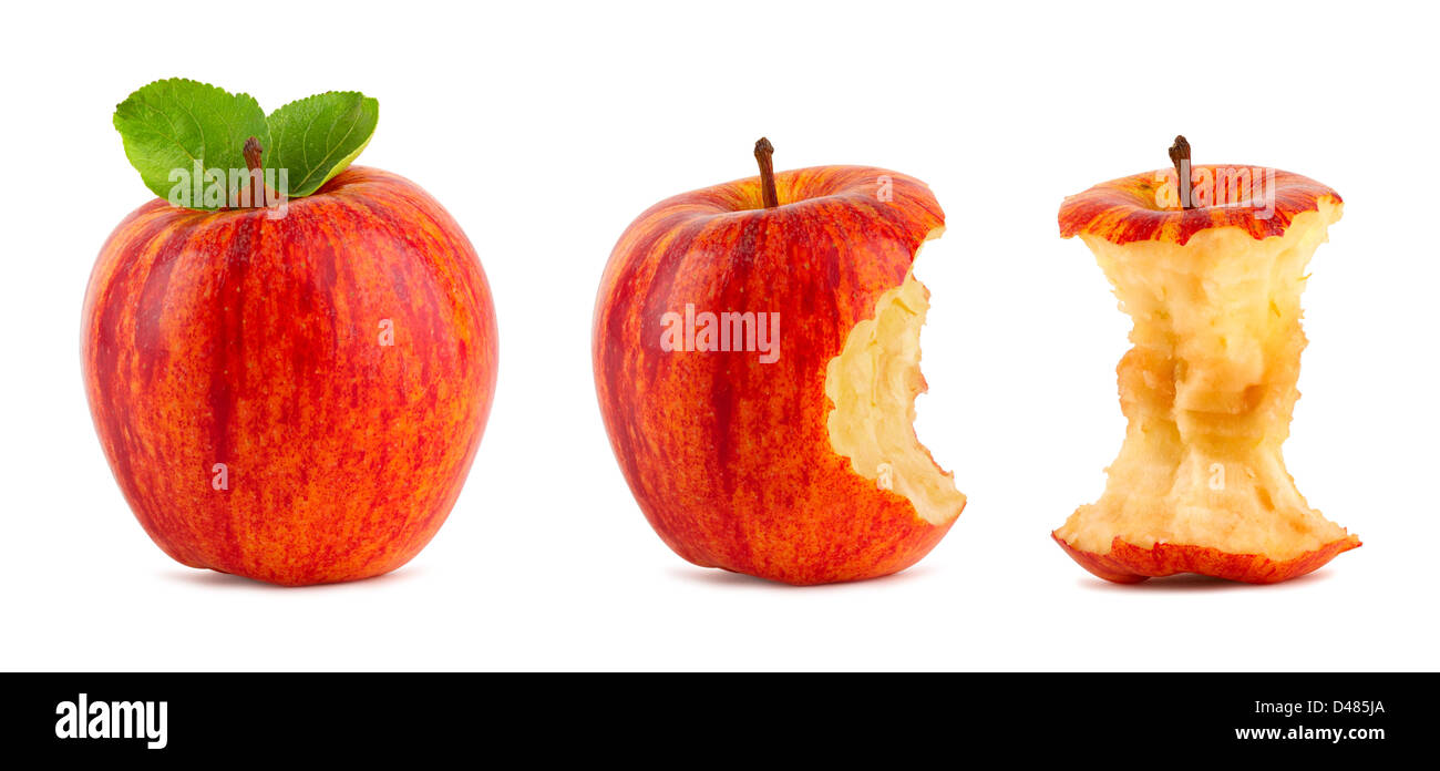 row of red apples on white background - Stock Image