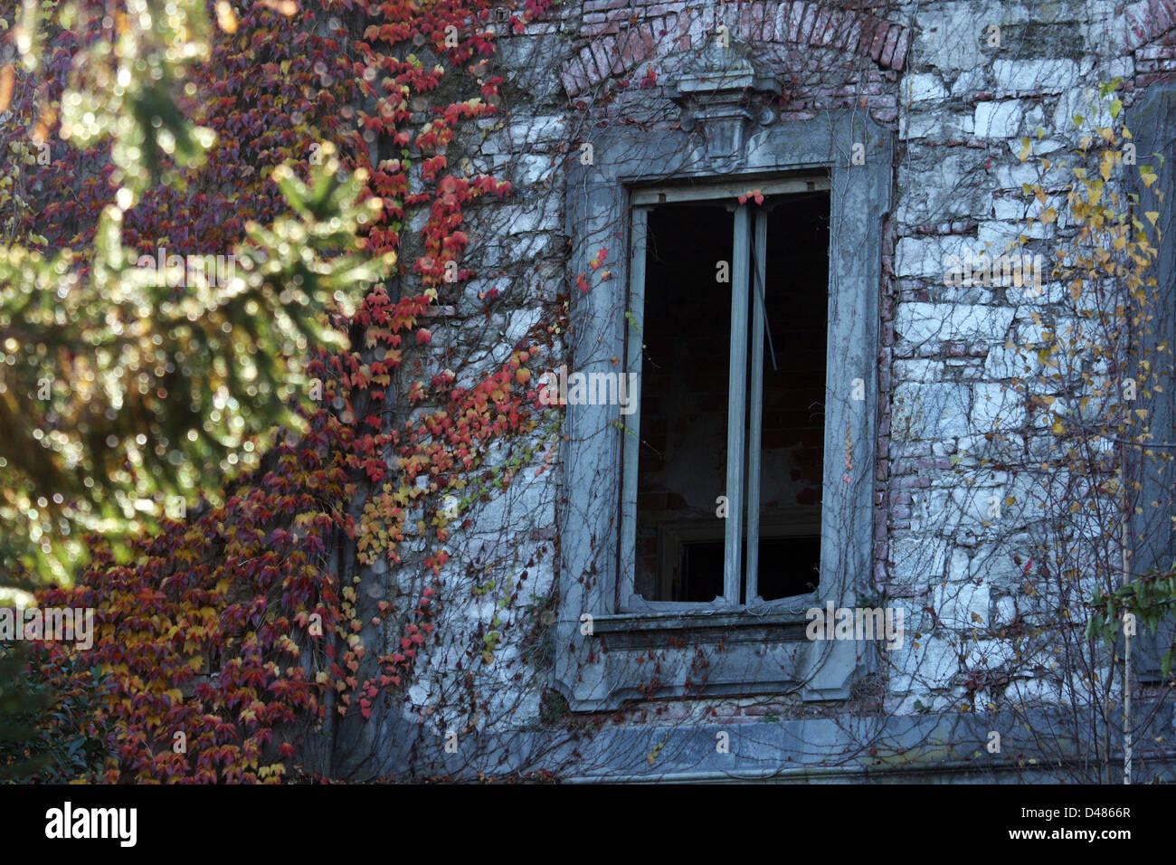 Italy, Lake Maggiore, closeup of a window - Stock Image