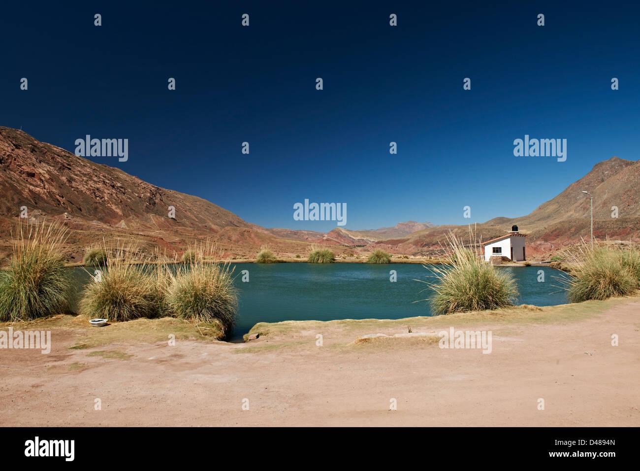 the hot spring El Ojo del Inca, Potosi, Bolivia, South America - Stock Image