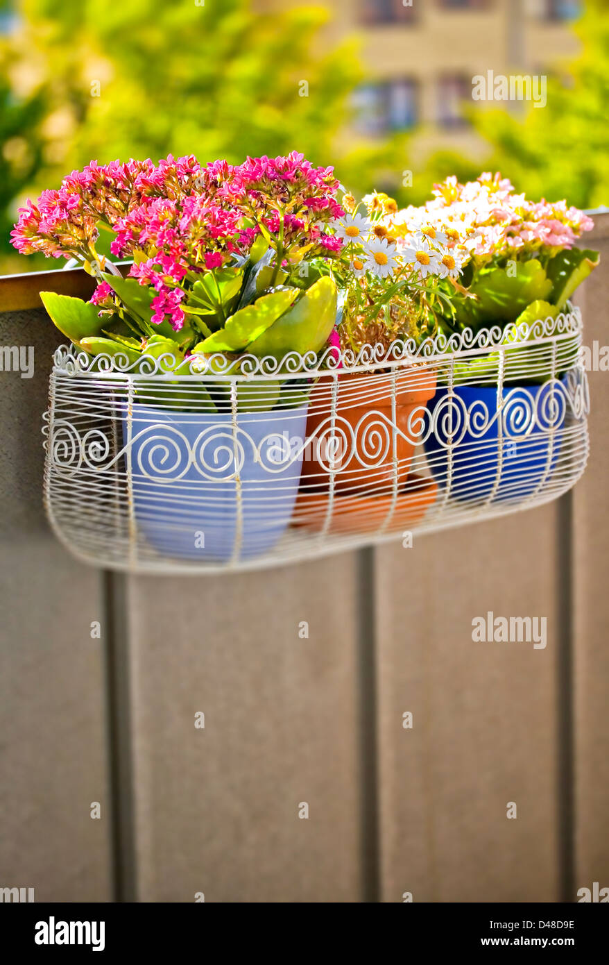Image of a balcony flower box filled with plant pots - Stock Image