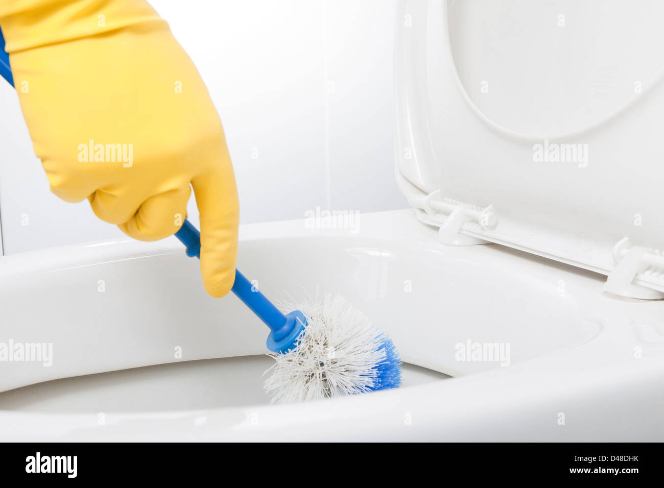 Cleaning Water Closet - Stock Image
