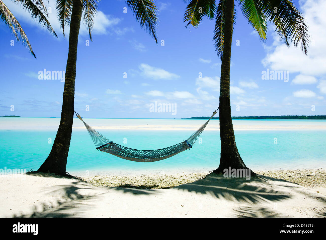 hammock between two palm trees on cook island beach stock photo