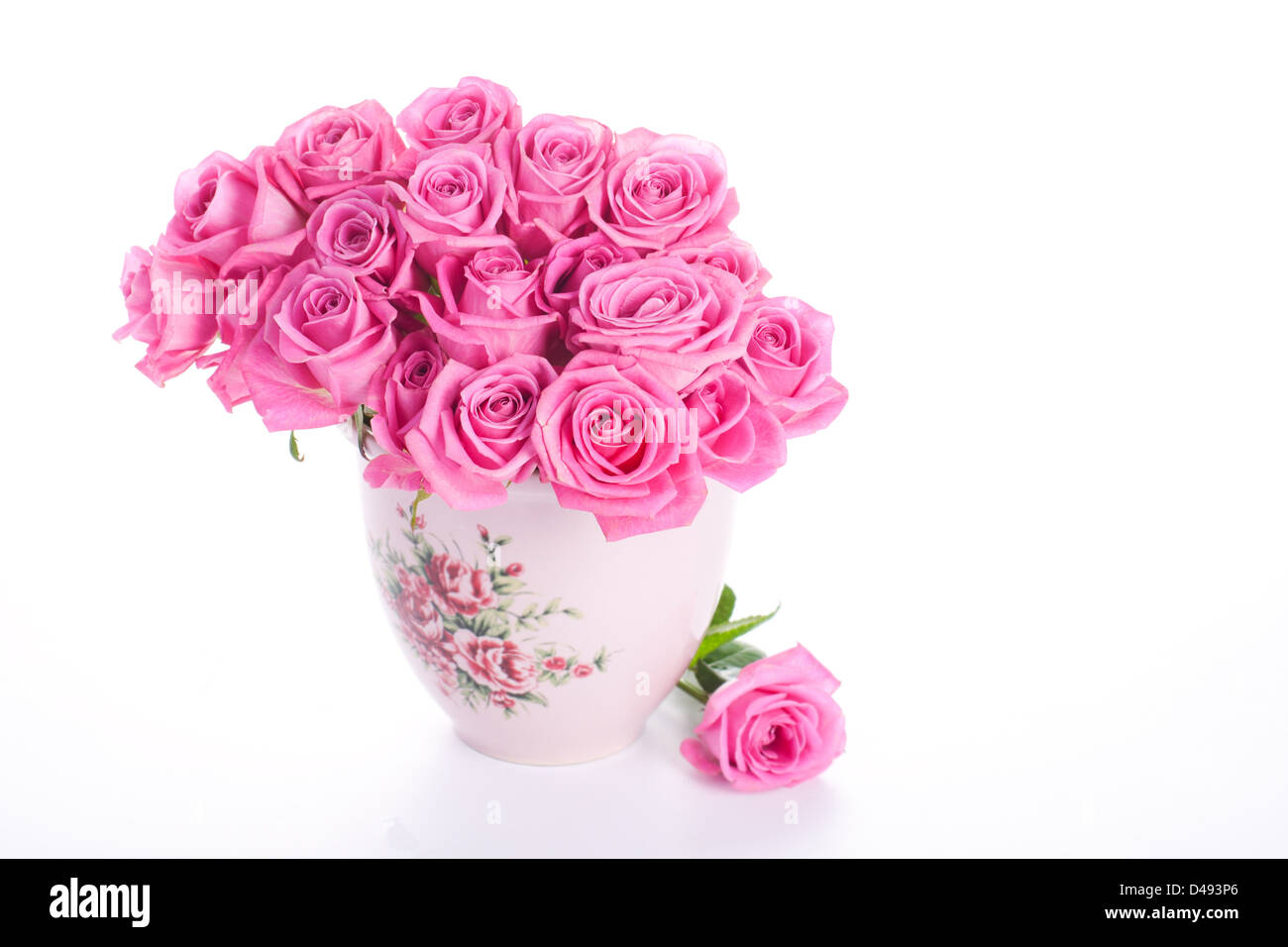 Pink roses in vase isolated on white background Stock Photo
