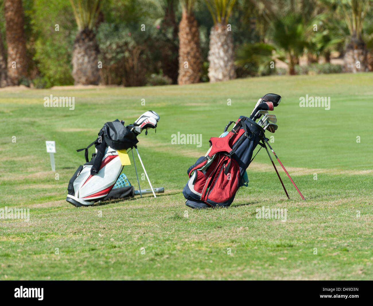 Two golf bags with clubs standing on a course fairway - Stock Image