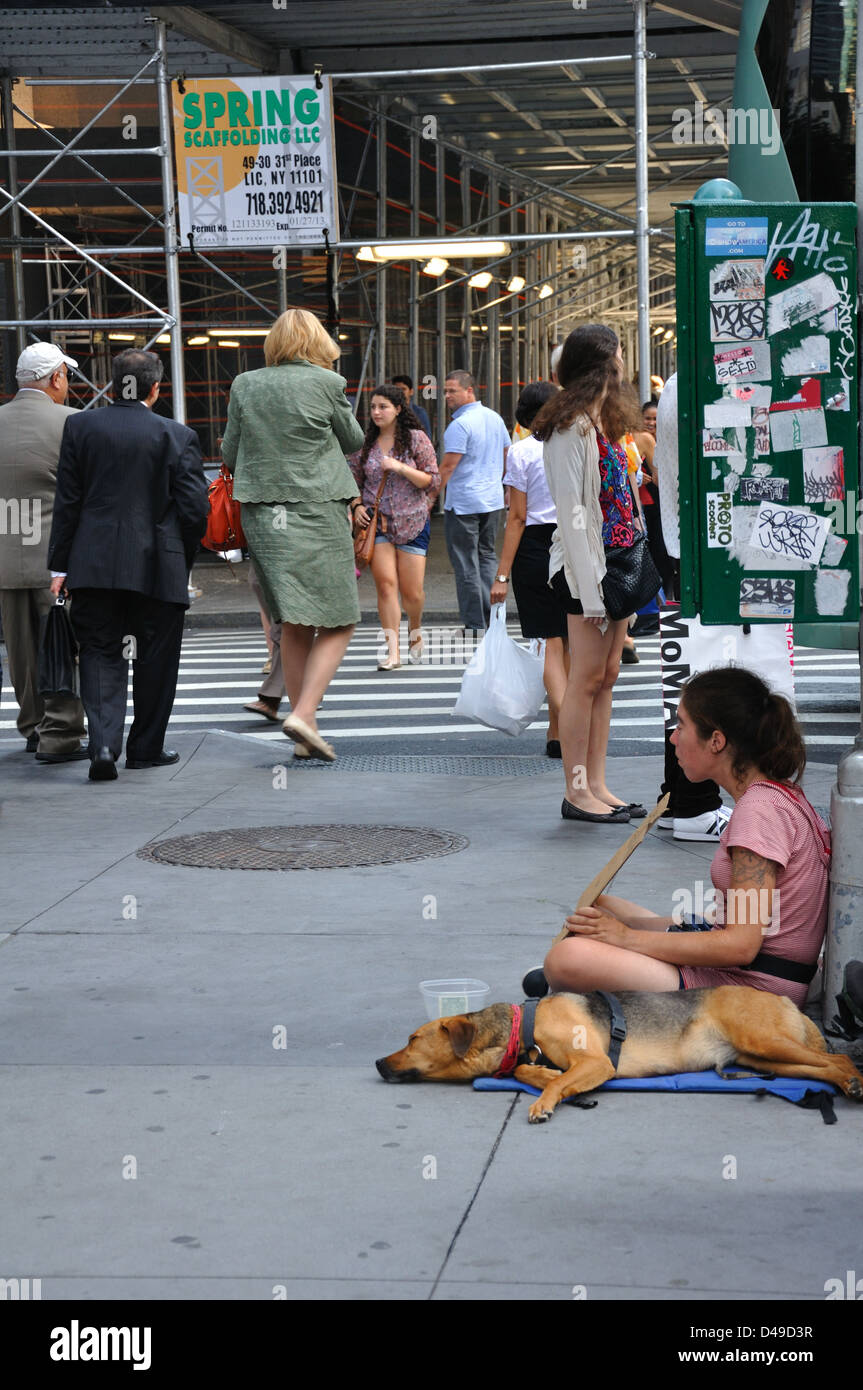 Young And Homeless In America >> Homeless Young Woman Begging For Money New York Usa Stock Photo