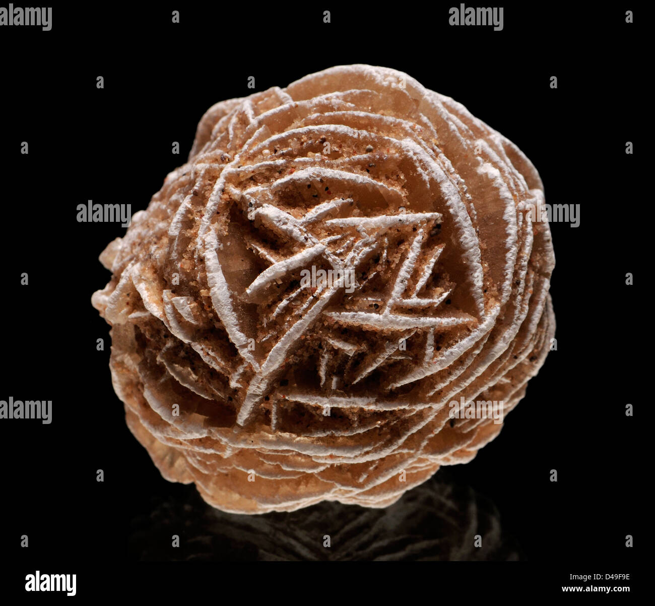 Baryte 'Desert Rose' Stock Photo