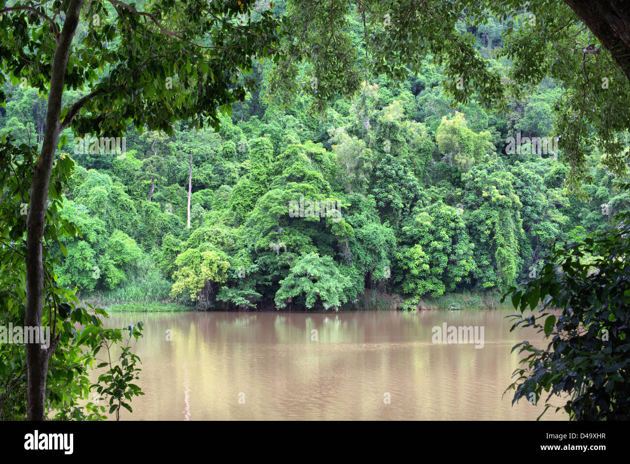Lake Placid, Cairns, Far North Queensland, Australia - Stock Image