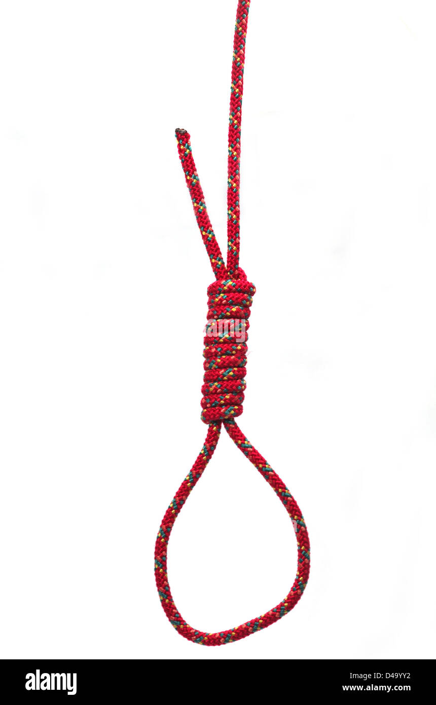 Noose isolated on a white background - Stock Image