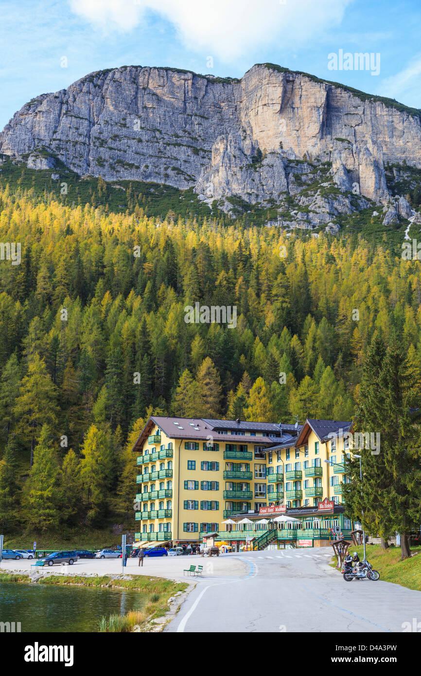 Alp mountain forest in autumn - Stock Image