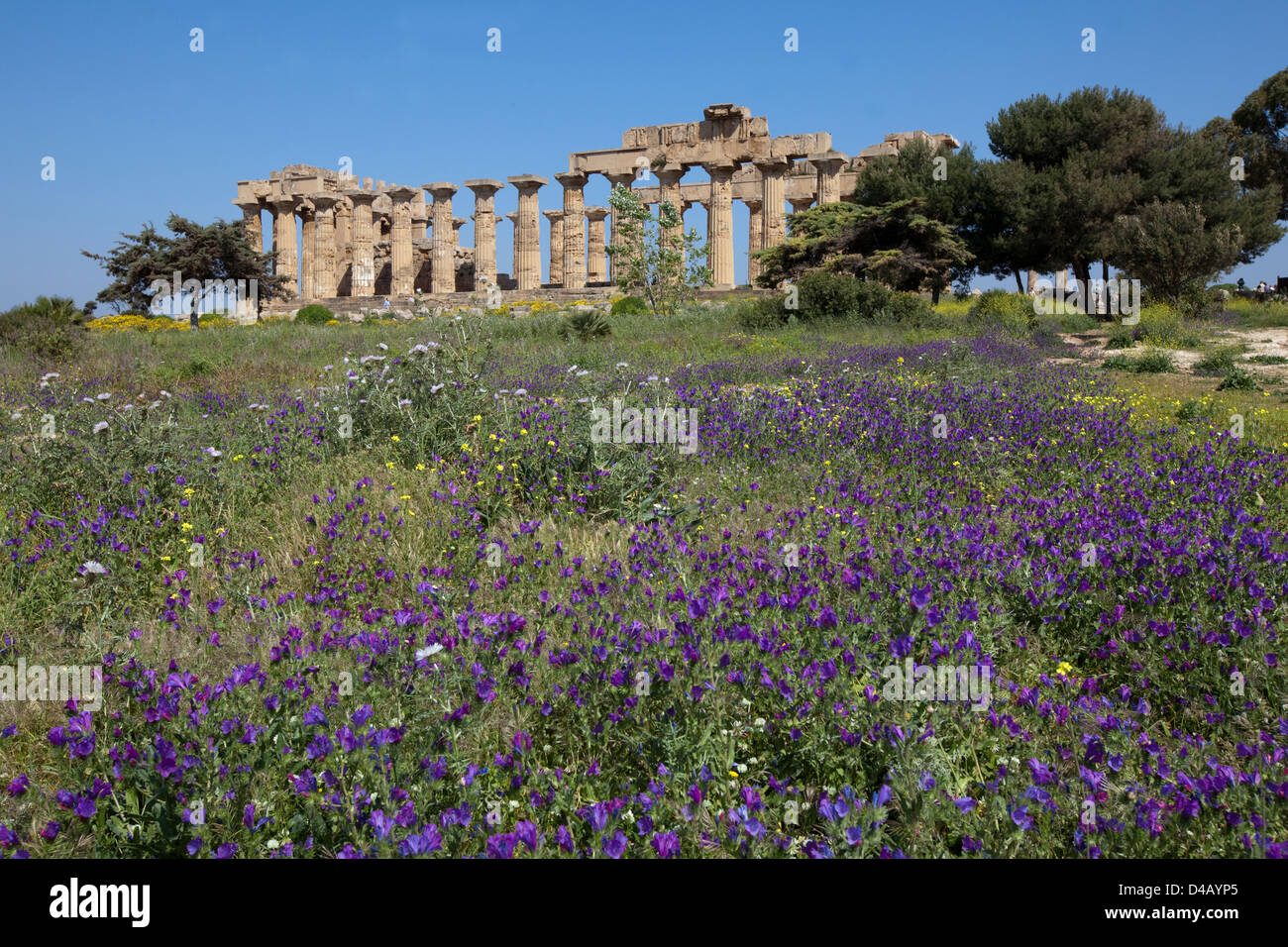Selinunte, Italy, archeological area of the ancient Greek city of Selinus - Stock Image