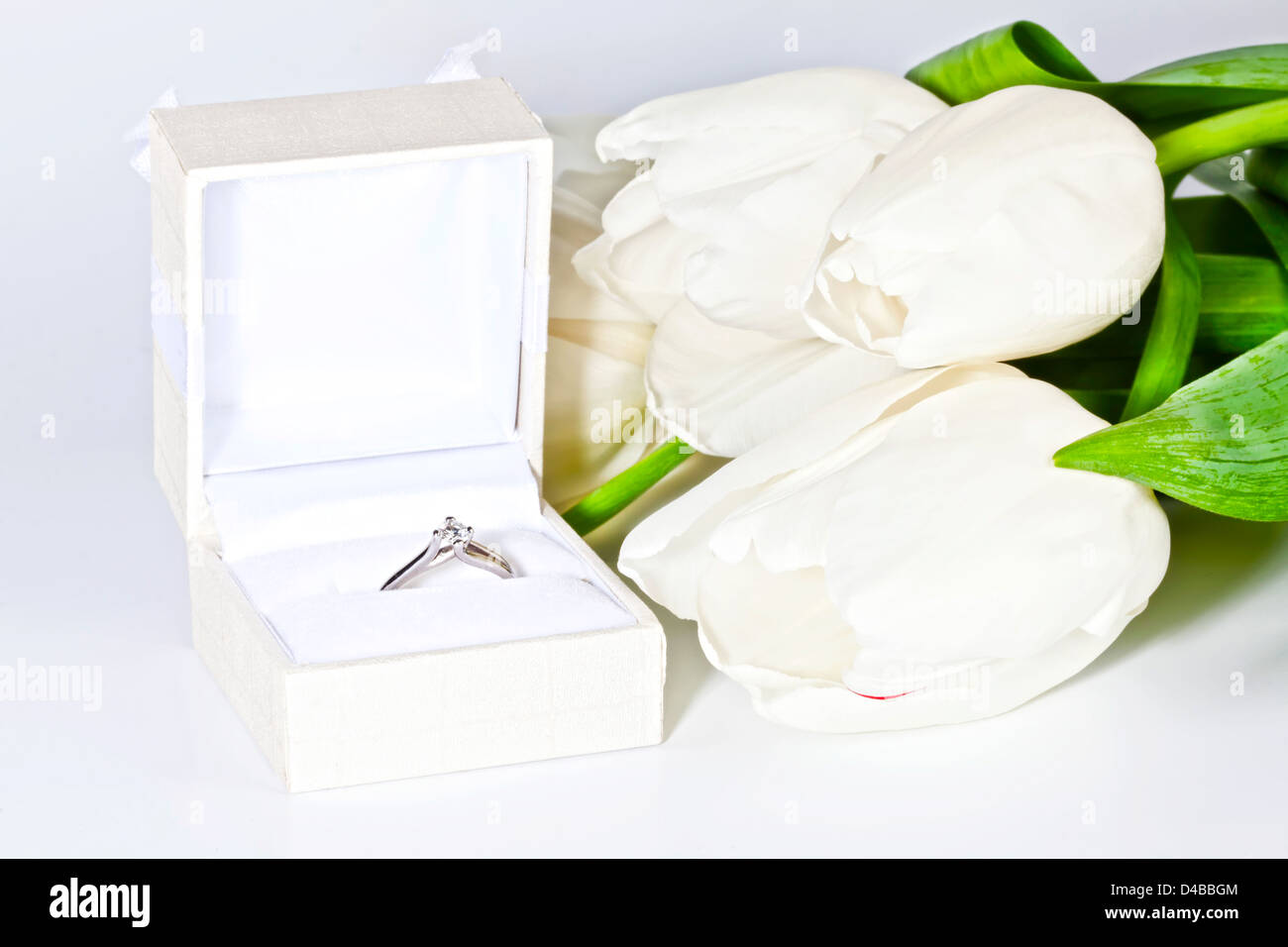 White spring tulips with box with diamond ring - Stock Image