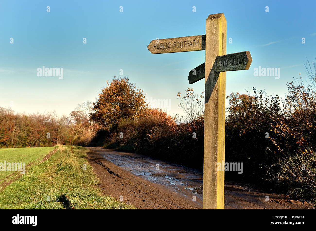 Close up of public footpath sign in Surrey countryside UK - Stock Image