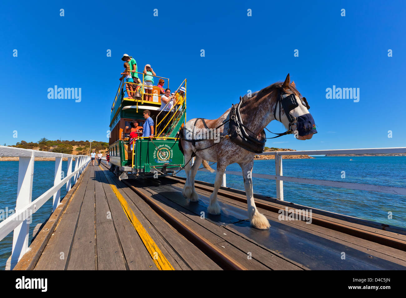 Granite Island horse drawn tram people tourism tourists Clydesdale historical Victor Harbor Fleurieu Peninsula South - Stock Image