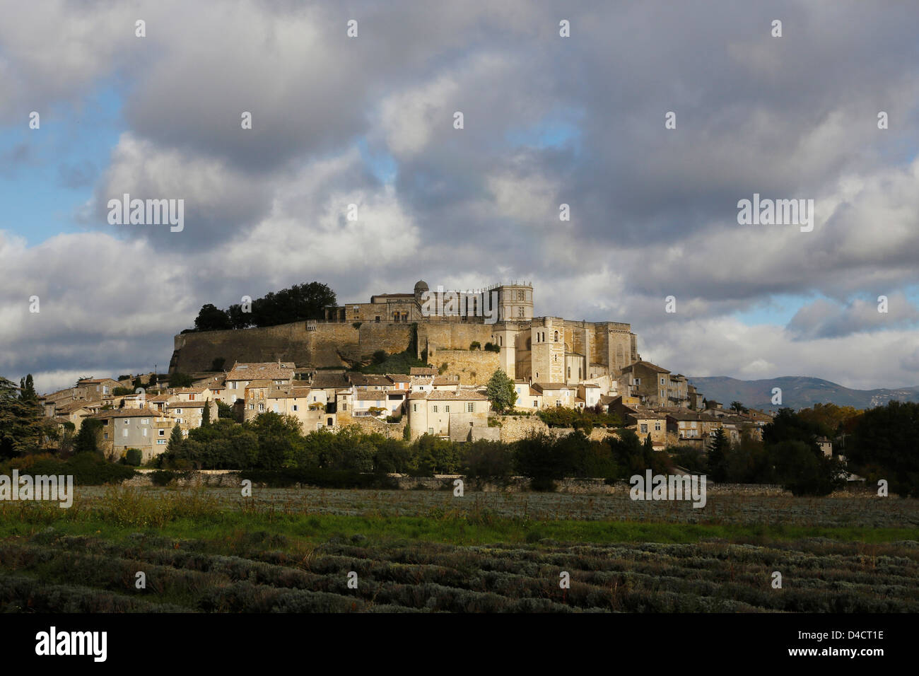 Medieval site Grignan with harvested lavender fields, France - Stock Image