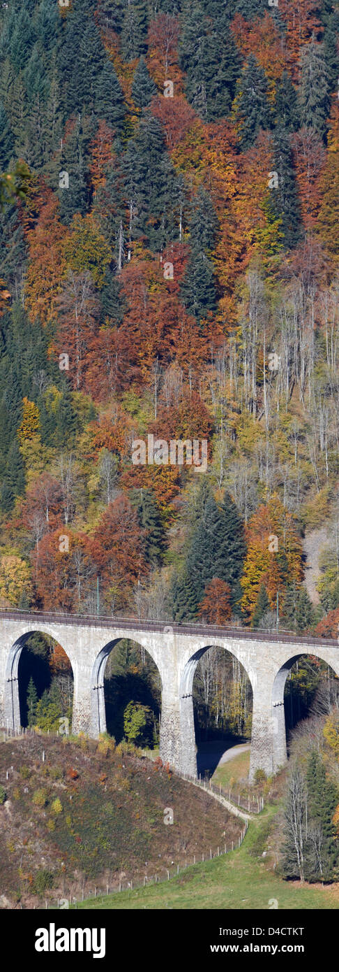 Railwax bridge above the Ravenna Canyon in the Black Forest, Germany Stock Photo