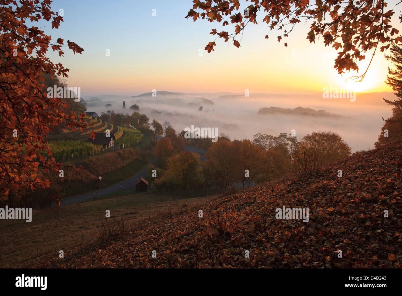 Saaletal, Thuringia, Germany, Europe - Stock Image