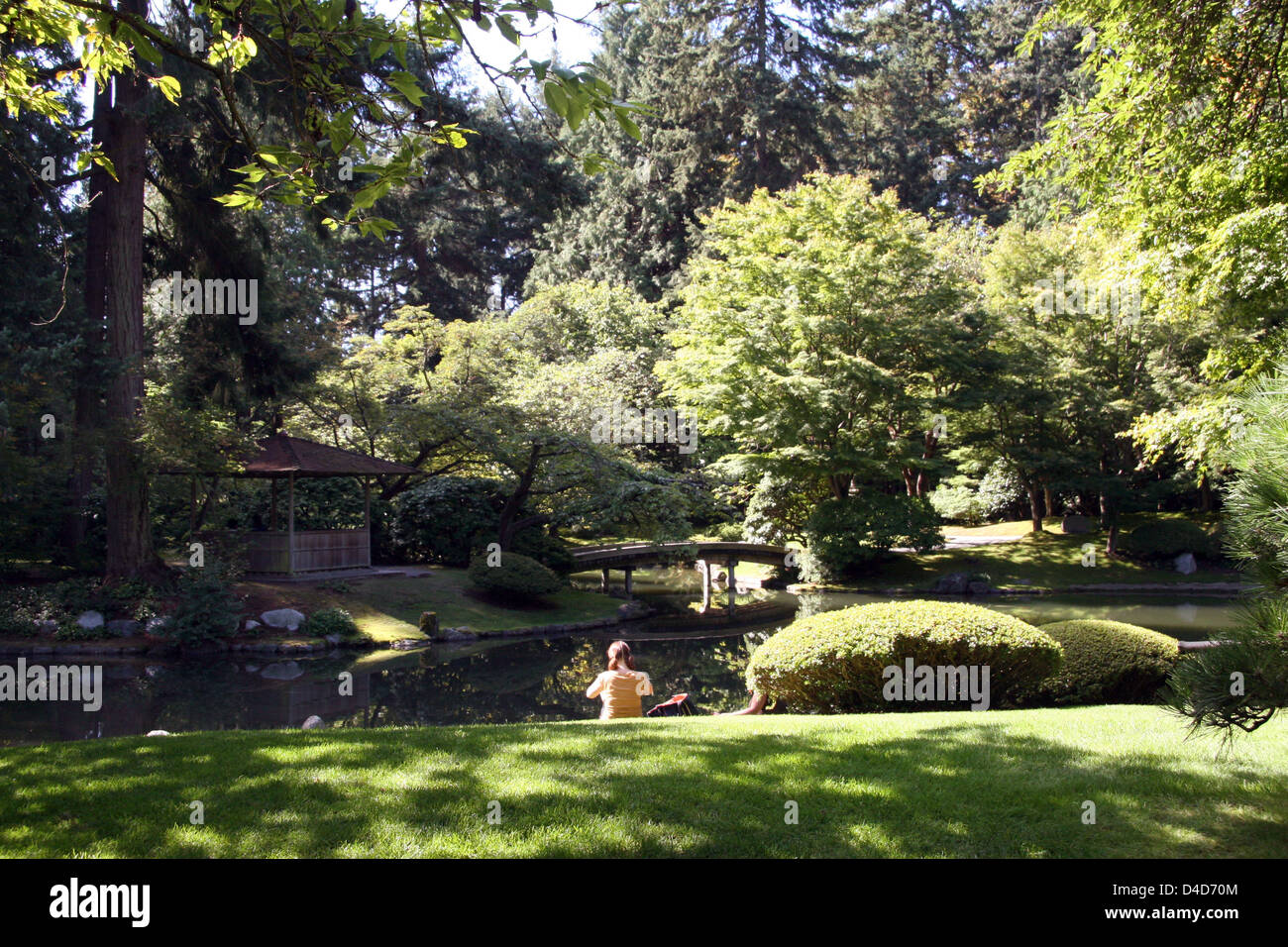 The picture shows the Nitobe Memorial Garden, a Japanese garden on the premises of the