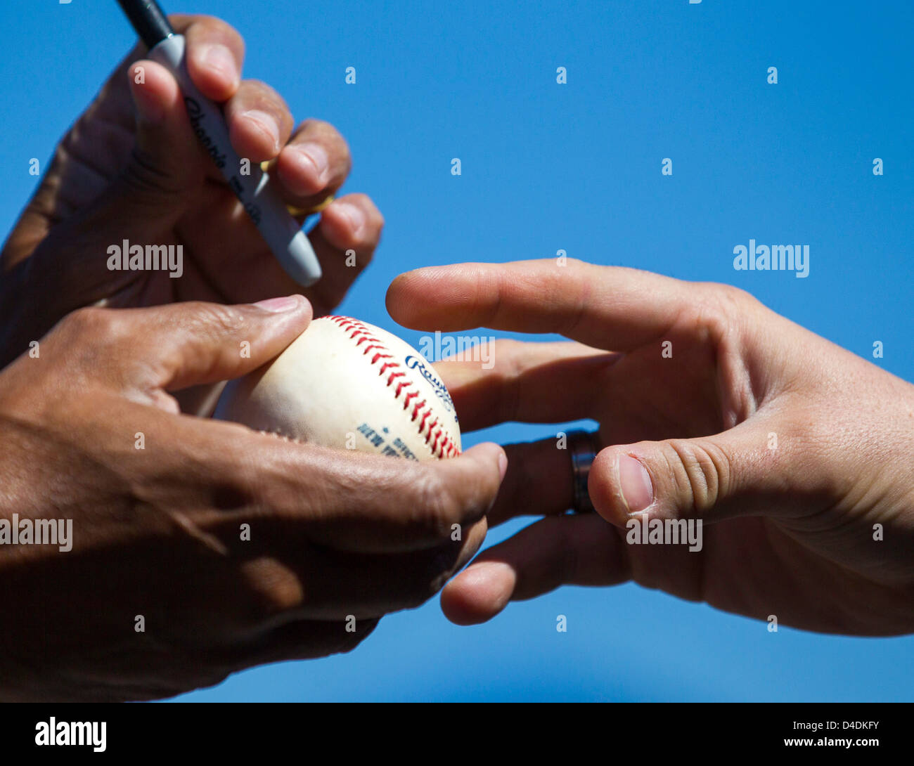 Baseball fan waiting for an autograph - Stock Image