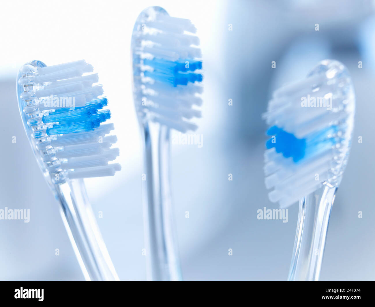 Close up of toothbrushes Stock Photo