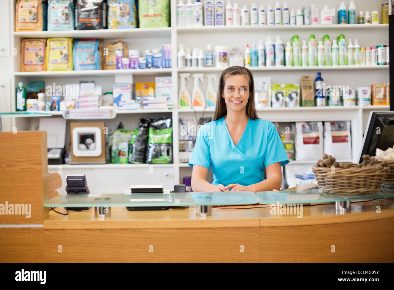 Receptionist at front desk of vet's surgery - Stock Image