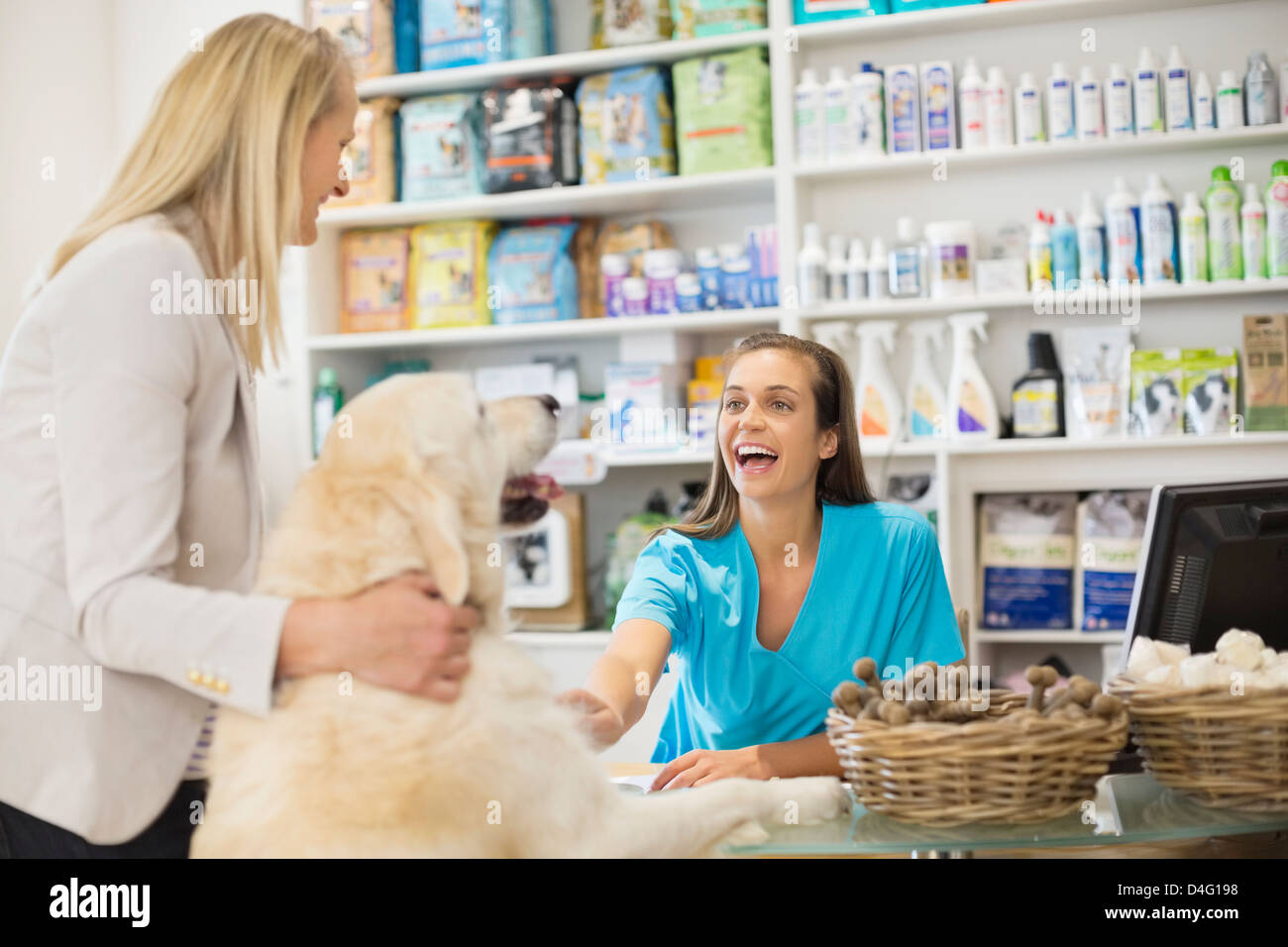 Receptionist greeting dog in vet's surgery - Stock Image