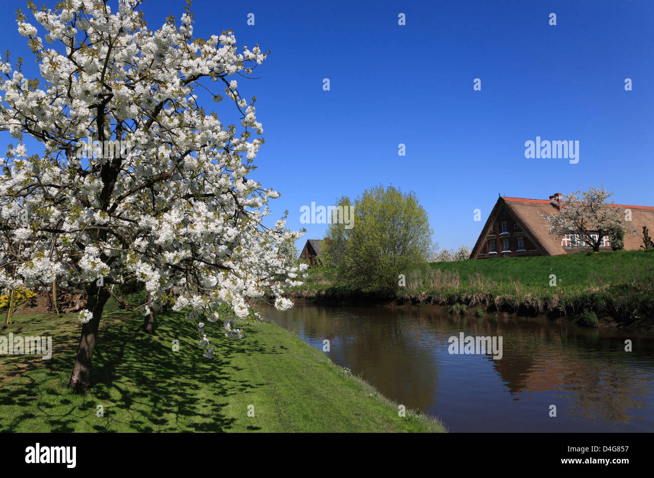 Altes Land, river Luehe, Lower Saxony, Germany - Stock Image