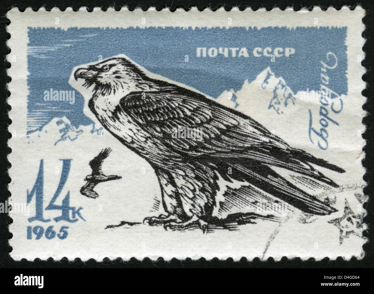 Birds of the USSR