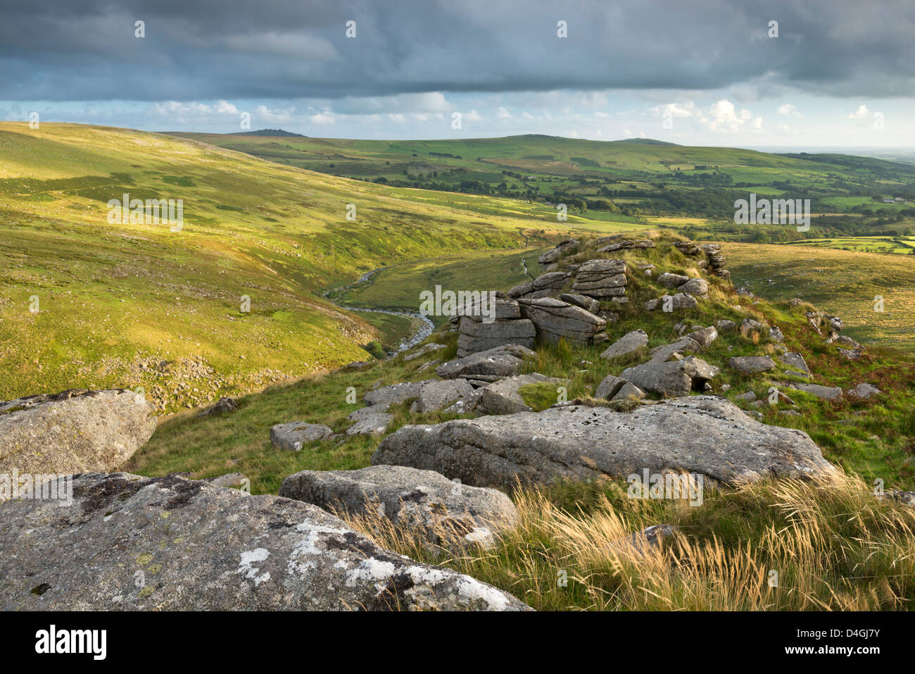 Tavy Cleave viewed from Ger Tor, Dartmoor, Devon, England. Summer (August) 2012 - Stock Image