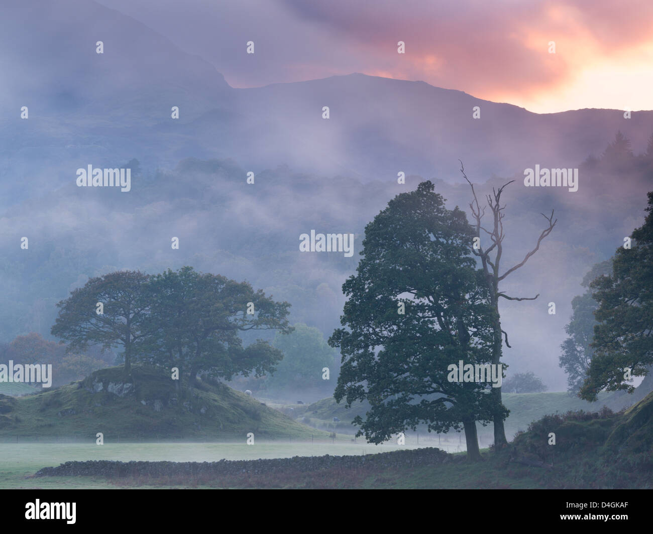 Atmospheric misty sunset near Elterwater, Lake District, Cumbria, England. Autumn (October) 2012. - Stock Image