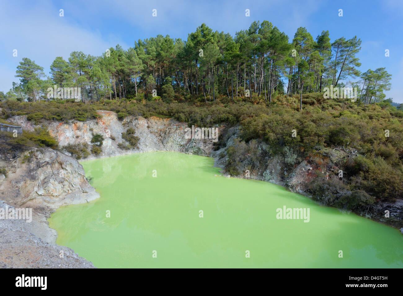 Devil's Bath, Waiotapu Thermal Area, Rotorua, North Island, New Zealand - Stock Image
