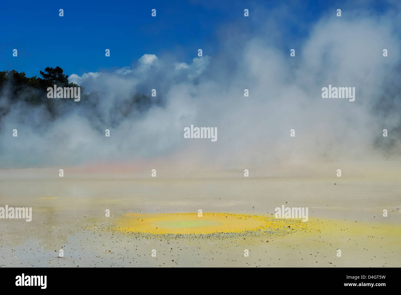 Waiotapu thermal area, Rotorua, North Island, New Zealand - Stock Image