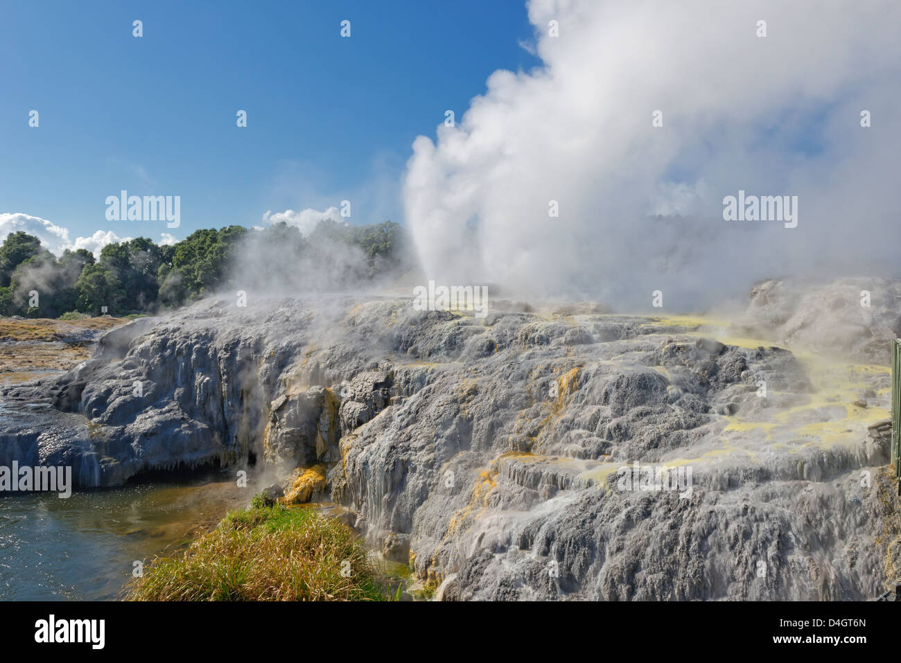Pohutu Geyser and Prince of Wales Geyser, Rotorua, North Island, New Zealand - Stock Image